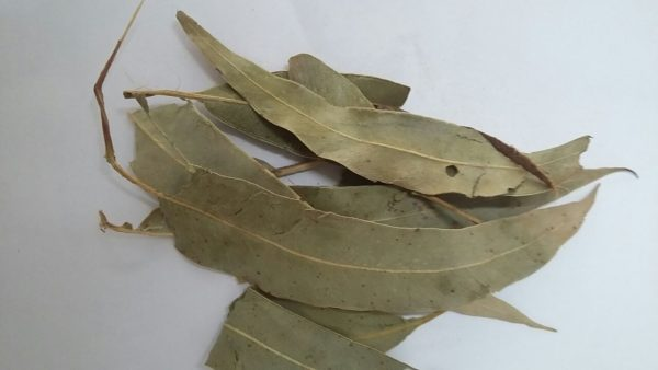 Eucalipto (Citriodora) 100g-0